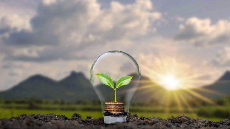 Pour être sûr d'acheter de l'énergie verte : comment fonctionne la garantie d'origine GO ?